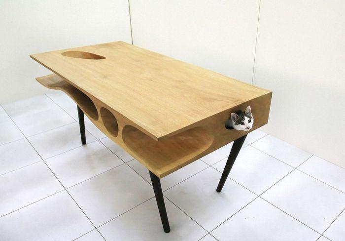 cosas-para-gatos-2