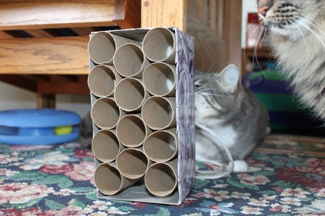 cosas-para-gatos-5