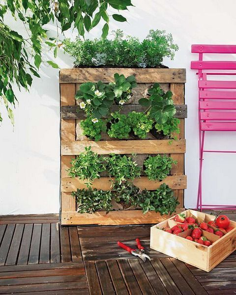 16 dise os de muebles con palets que no imaginar as que se for Plantas jardin vertical exterior
