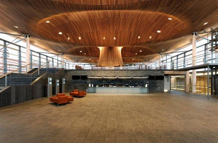 techos-especiales-originales-asombrosos-asamblea-nacional