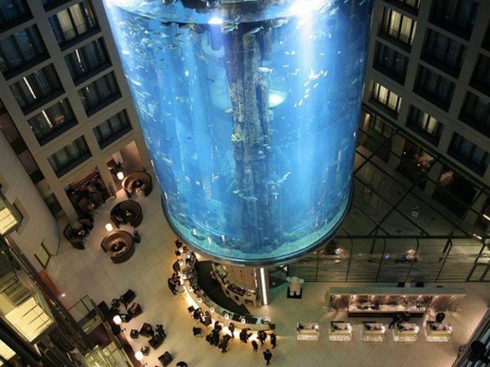 acuario-cilindrico-hall-hotel-radisson-01