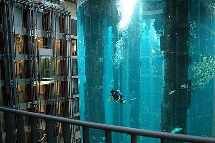 acuario-cilindrico-hall-hotel-radisson-02