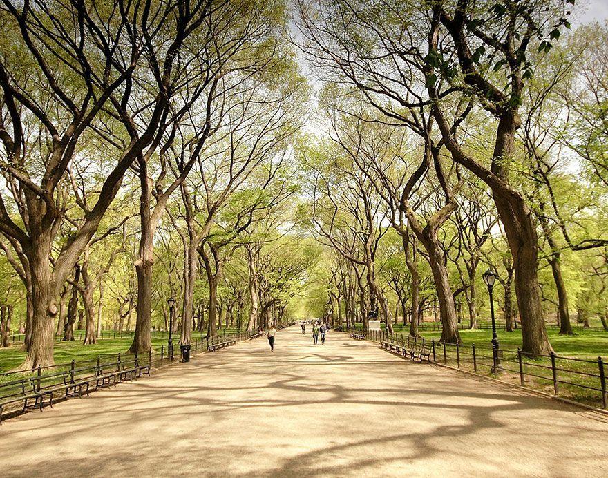 lugares-conocidos-vistos-otra-perspectiva-central-park