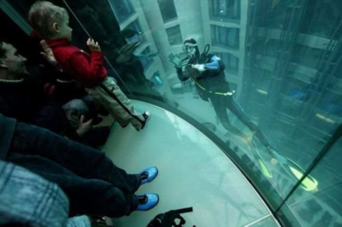 acuario-cilindrico-hall-hotel-radisson-05