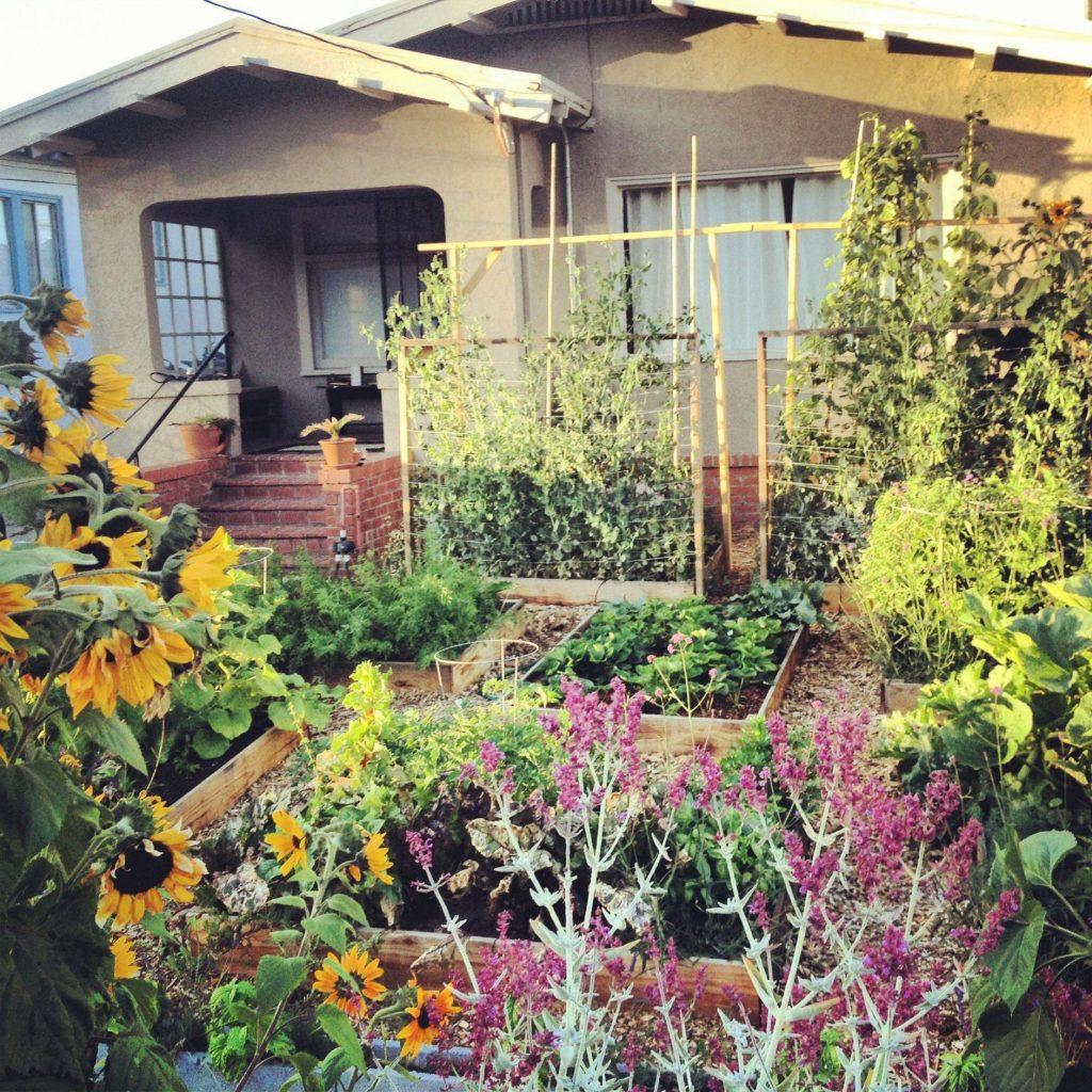 No sab a qu hacer con el jard n y se hace l solo un for El jardin urbano