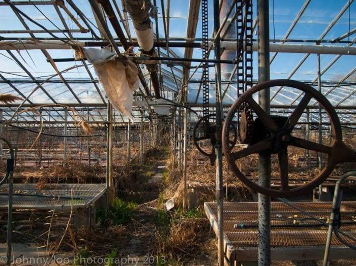 lugares-abandonados-llenos-historias-invernadero