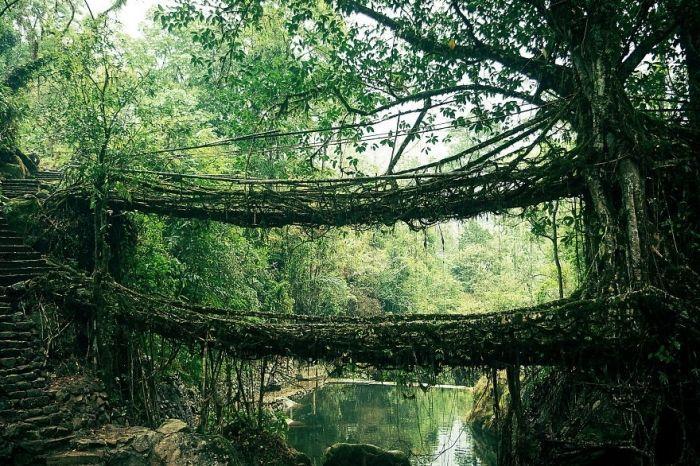 puentes-viejos-piedra-bucolicos-hermosos-raices