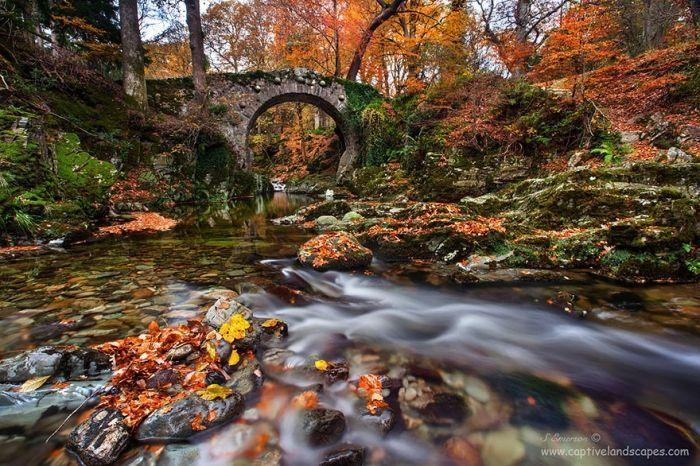 puentes de piedras 14