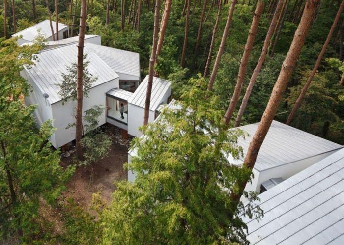 tiny house casa pequena blanca construida entre arboles pasillos cubiertos conectan