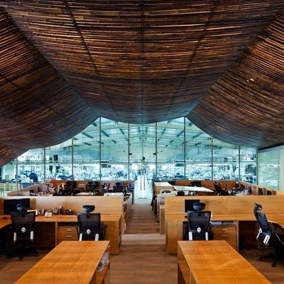 detalle techo bambu fabrica despachos mesas ordenadores ventanal