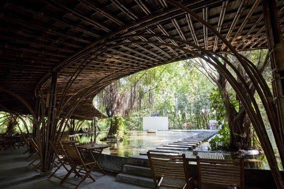 estructura bambu cafe interior exterior vegetacion