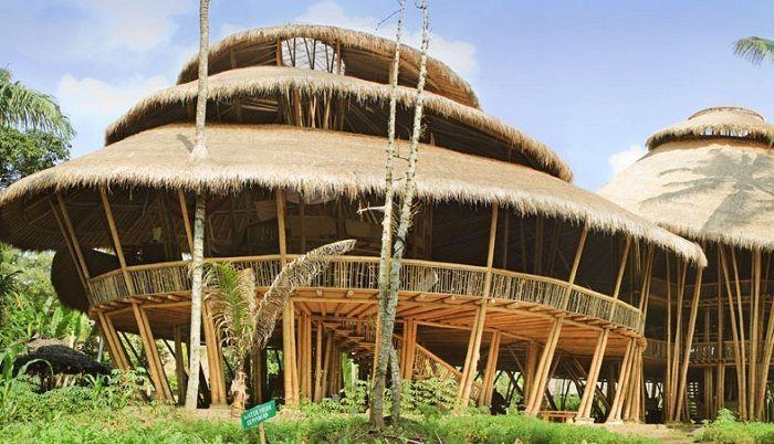 escuela bambu exterior pilares tejado vegetacion