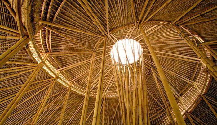 techo interior espiral bambu escuela claraboia