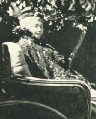 Sarah winchester vieja silla ruedas