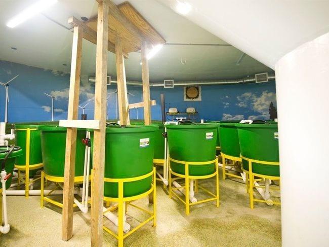 bunker-07