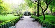 jardin secreto 1