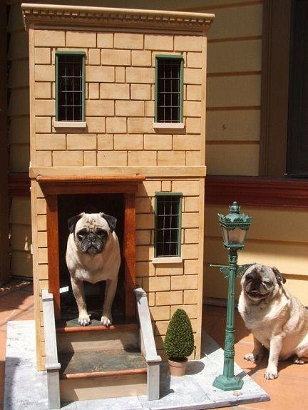 dog-houses13