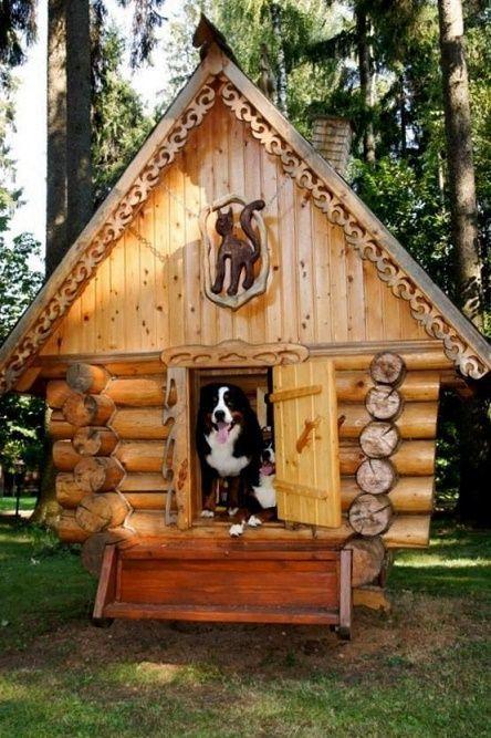 dog-houses22