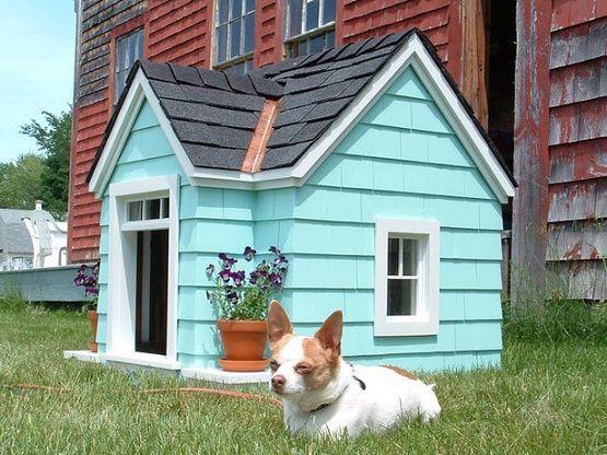 dog-houses3