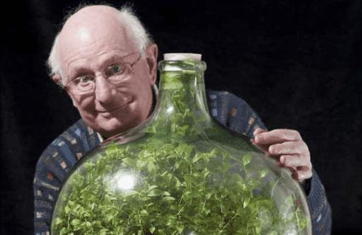 jardin autosostenible