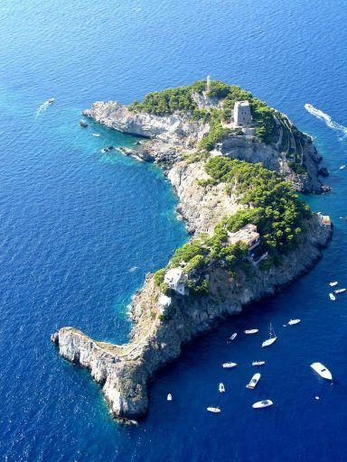 isla delfin 1