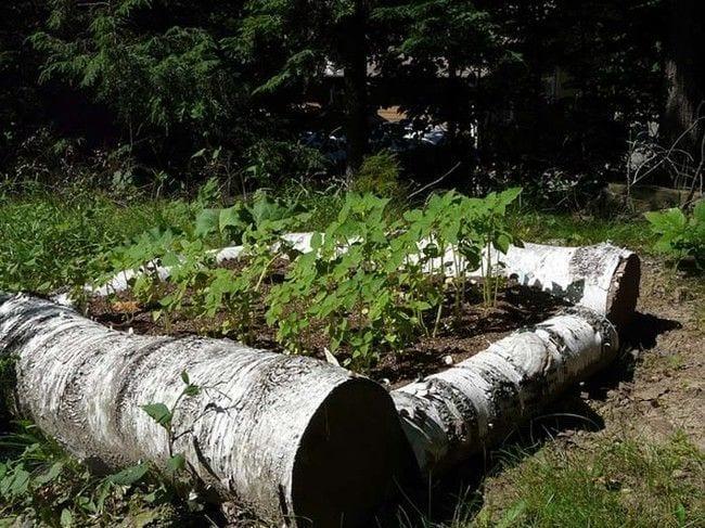 reciclar-troncos-11