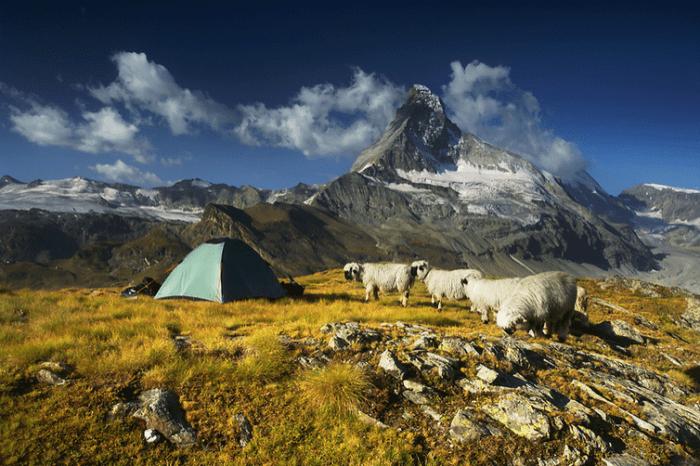 Camping_increibles_15