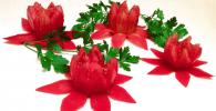 flor tomate destacada