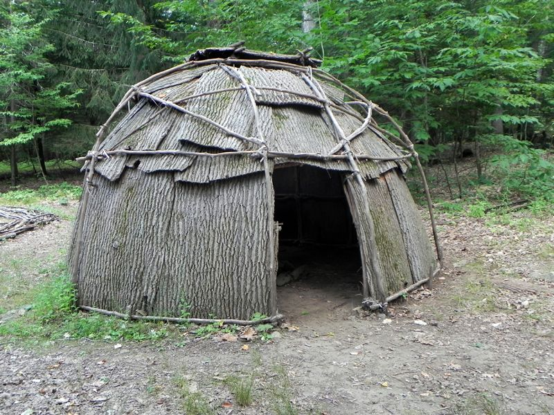vivienda-tradicional-wigwam-corteza-ramas-bosque