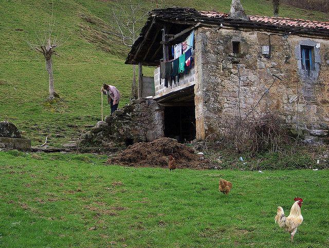 tipos-casas-mundo-cabana-pasiega-piedra-prado-gallina-gallo-anciana-ropa-tendida