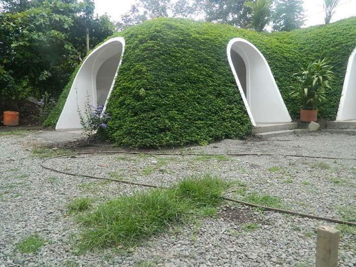 casa tejado vegetal ecologica barata integrada detalle entrada
