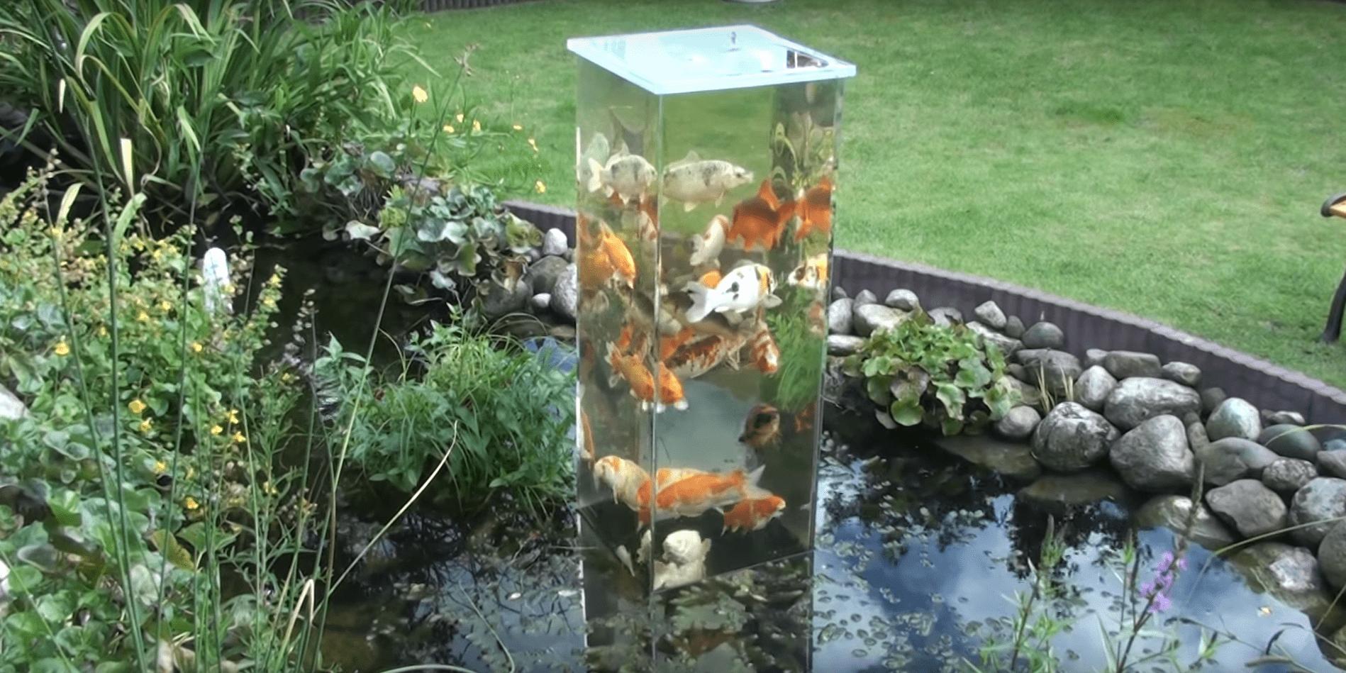 Introduce una torre dentro de su estanque y mira lo que for Estanque koi pequeno