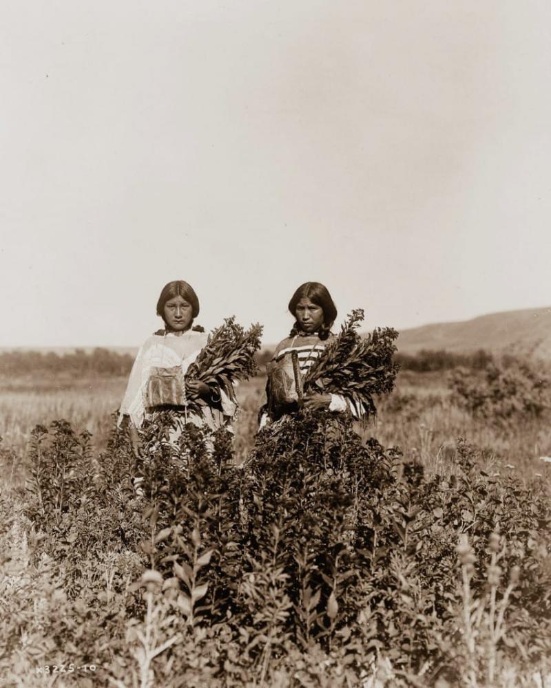 fotos-nativos-americanos-08