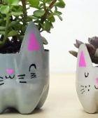 maceteros botellas gatos