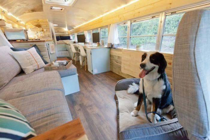 autobuses-casa11