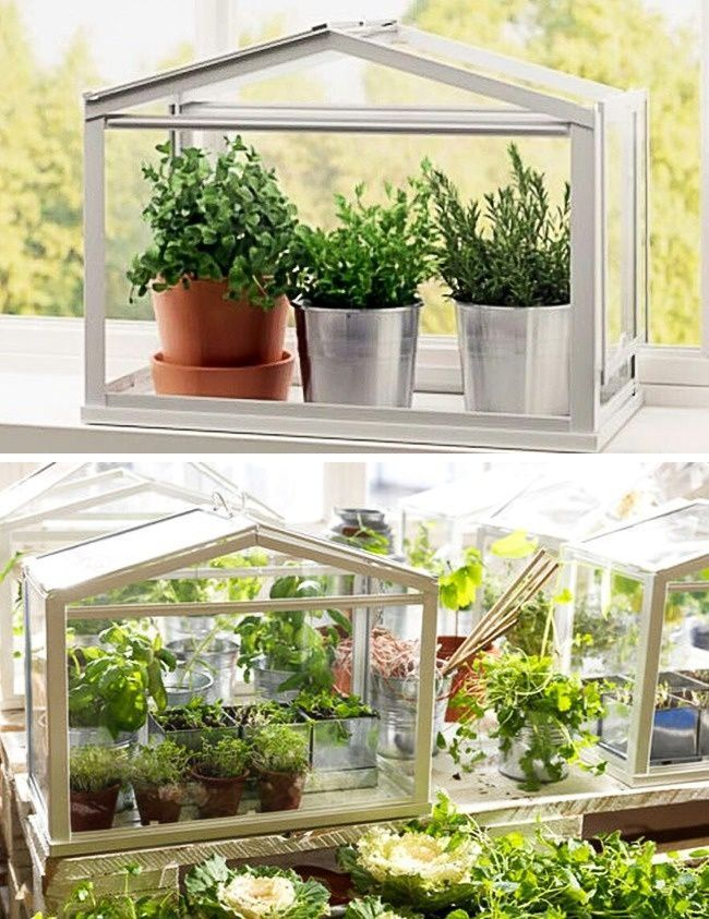 7 ideas para poder tener un mini huerto en tu apartamento casas incre bles - Huerto en casa ikea ...