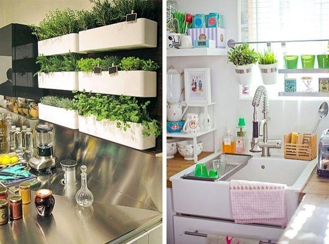 7 ideas para poder tener un mini huerto en tu apartamento casas incre bles - Pequeno huerto en casa ...