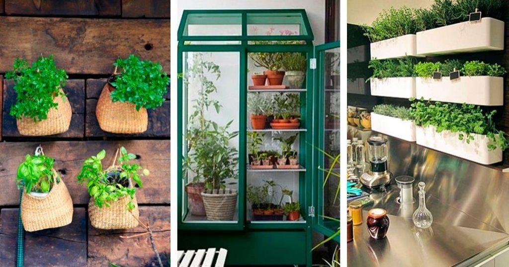 7 ideas para poder tener un mini huerto en tu apartamento - Pequeno huerto en casa ...