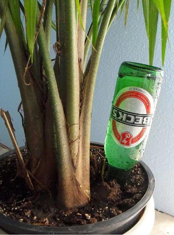 botella-riego-plantas05