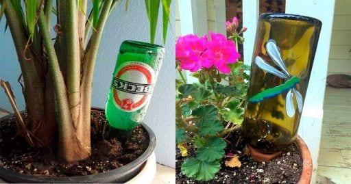 botellas regar plantas