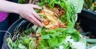 desperdicio comida destacada