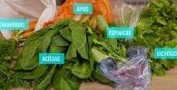 conservar verdura trucos