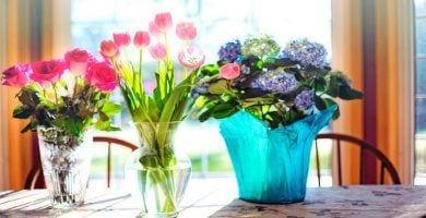 ramos-flores-trucos-destacada