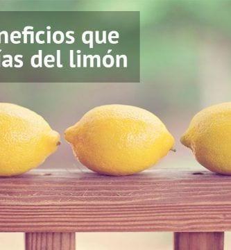 limones-usos