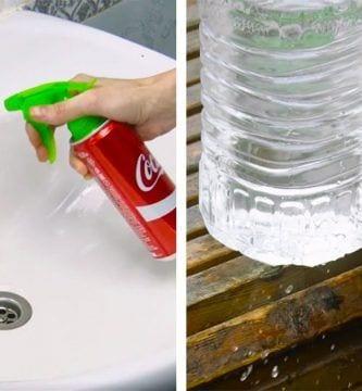reciclar las botellas de plastico