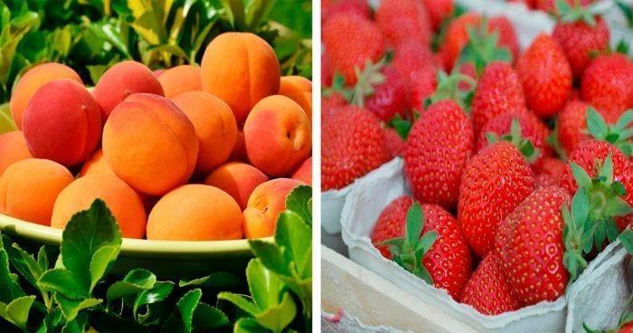 albaricoque-fresas