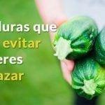 verduras-engordan-dest