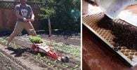 maquina cultivo eficiente dest