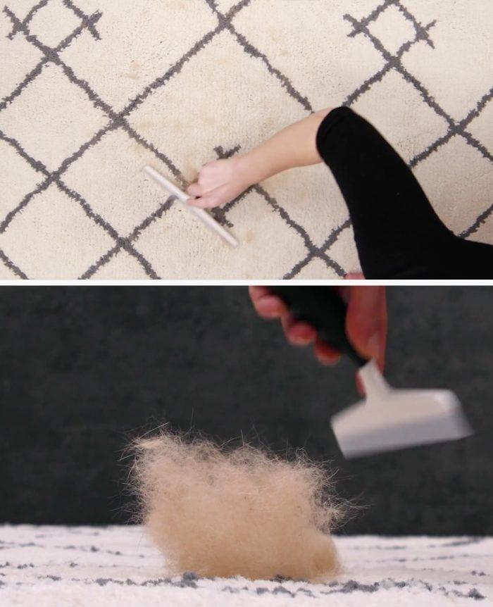 6 trucos eficaces para limpiar alfombras 04
