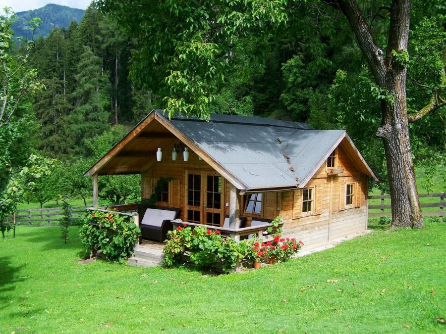todo-movimiento-tiny-house-madera-porch-flores-prado-bosque